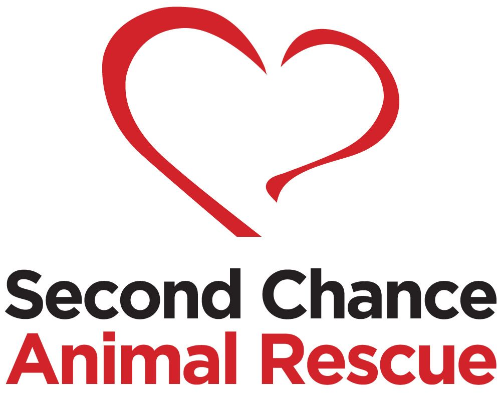 Second Chance logo square - new font